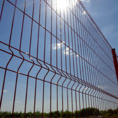 Red fencing panel shoot